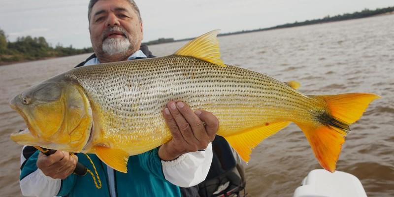 Pescaria de Março a Novembro