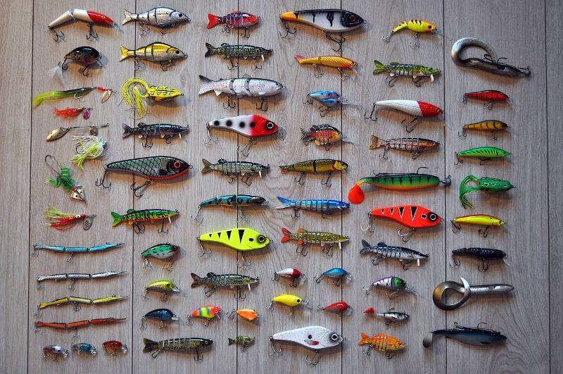 Equipamentos Indicados para cada Peixe